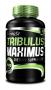 Tribulus Maximus (90tab)